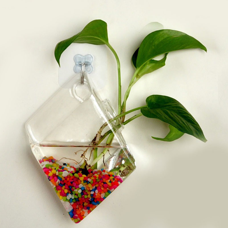 Wall Glass Hydroponic Water Plant Flower Clear Hanging Vase Home