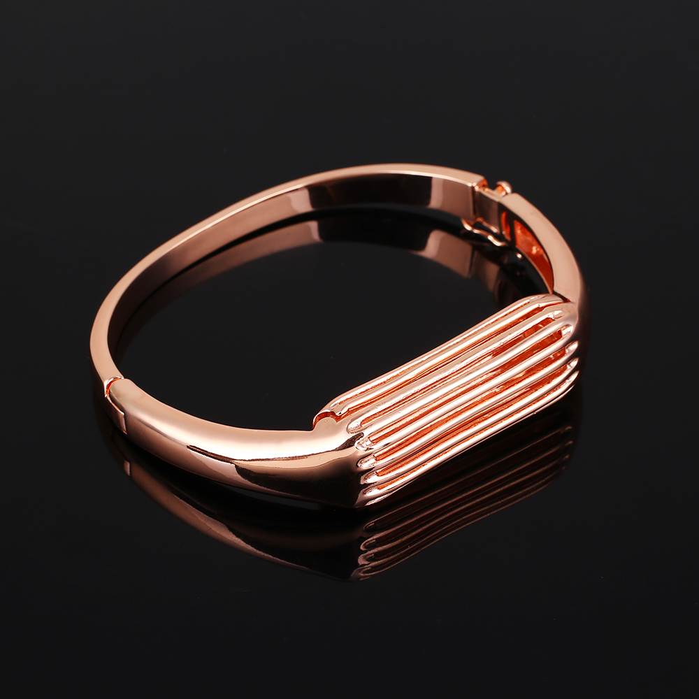 2485-Luxury-Metal-Bracelet-Bangle-Strap-Protector-For-Fitbit-Flex-2-Trackers