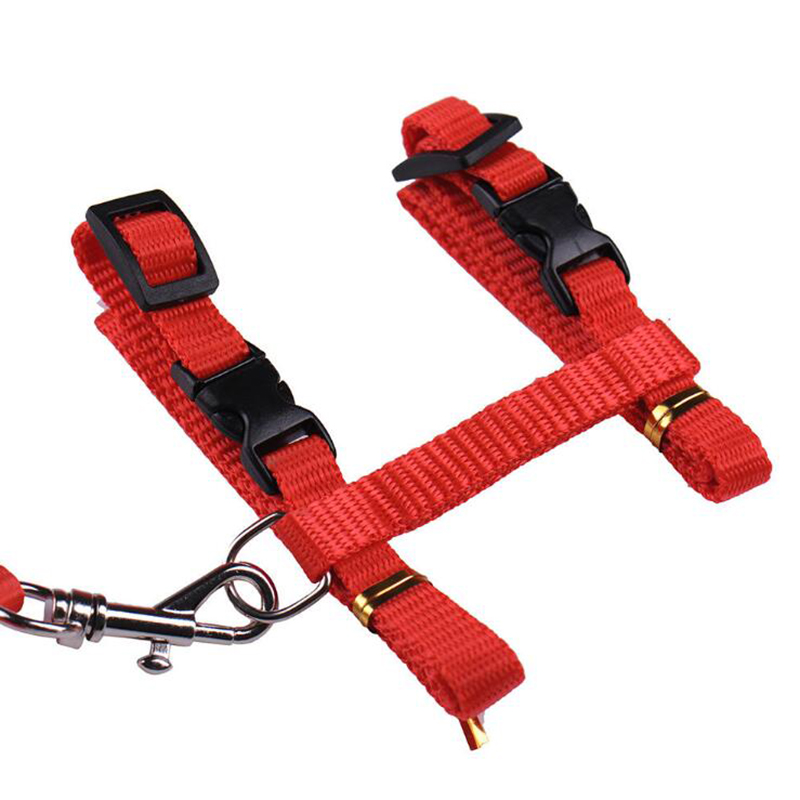 985A-Cat-Adjustable-Harness-Collar-Nylon-Leash-Safety-Walking-Rope-Pet-Supply