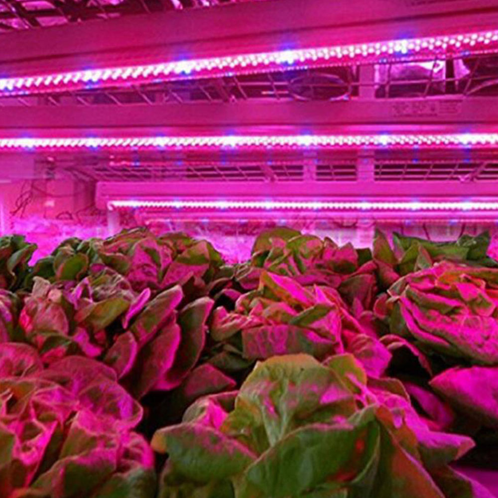 43A4-5730-LED-Grow-Light-Bar-Spectrum-Lamp-Strip-For-Indoor-Plant-Flowering