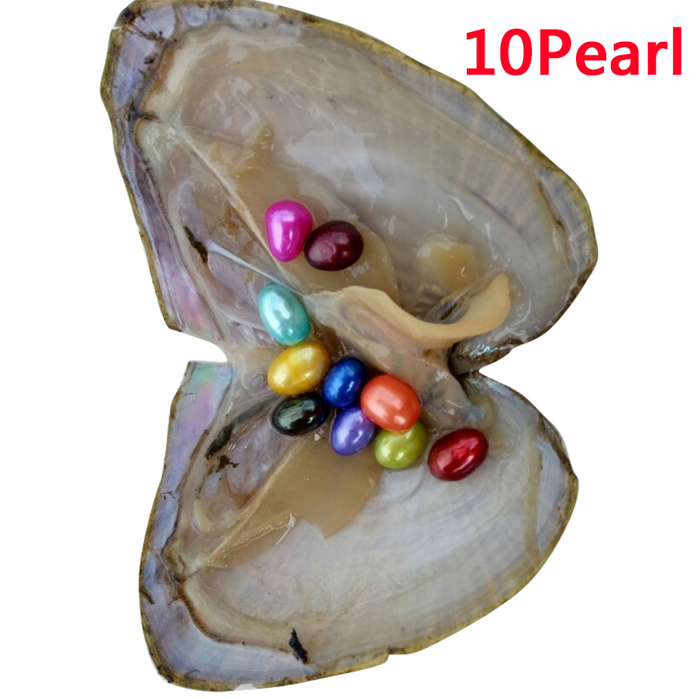 F9D7-6-10-20PCS-Individually-Wrapped-A-koya-Oysters-With-Large-Pearls-6-8mm